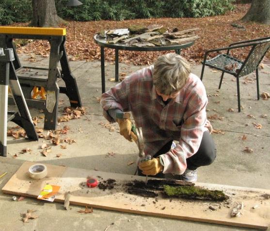 Cutting bark on rear patio